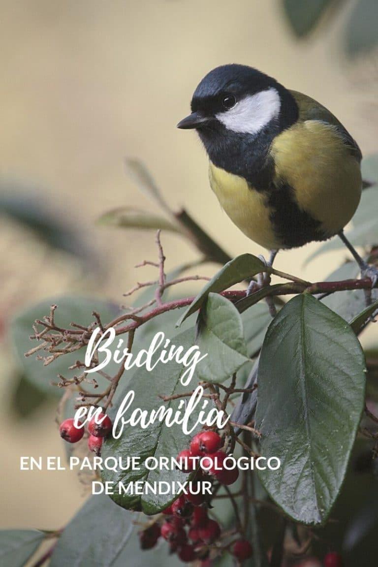 BIRDING-EN-FAMILIA-MENDIXUR-ALAVA-EUSKADI-CON-NIÑOS-BEKERREKE