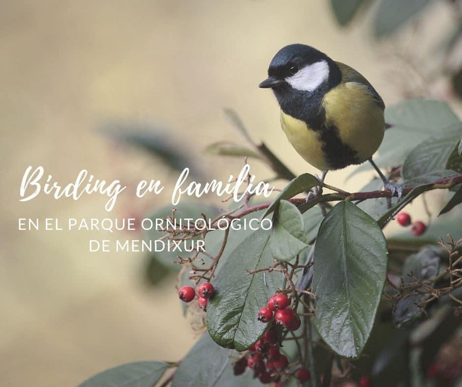 birding-en-familia-mendixur-alava-euskadi-con-ninos-bekerreke